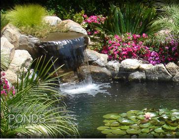 Pond Filter Care North County San Diego Koi Pond Maintenance